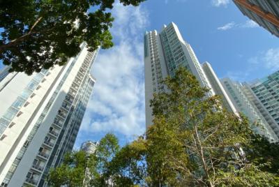 Stromy, ktoré efektívne zlepšujú ovzdušie v mestách